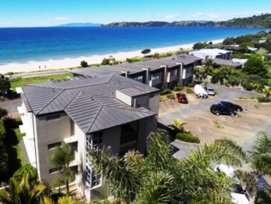 Management Rights Business for Sale Waiheke