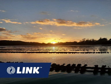 Oyster Farm Business for Sale Auckland