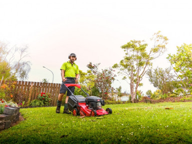 Garden and Lawn Care Franchise for Sale North Shore Auckland