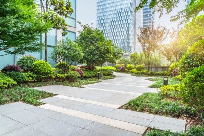 Landscaping Business for Sale Christchurch