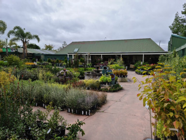 Garden Centre Business for Sale Hastings