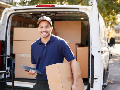 Import Distribution Business for Sale New Plymouth