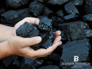 New Zealand Thermal Coal Resource Business for Sale New Plymouth