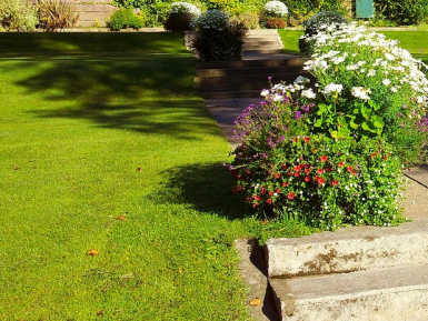 Lawnmowing and Gardening Franchise for Sale Christchurch