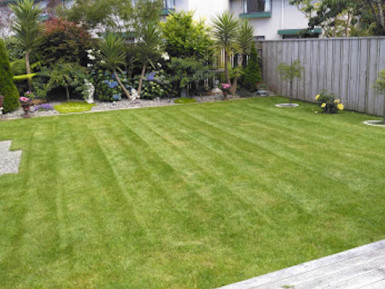 Lawn Mowing Franchise for Sale Lower Hutt Wellington