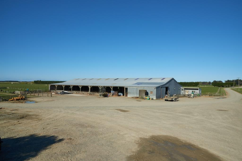 Dairy Farm Business for Sale Wallacetown