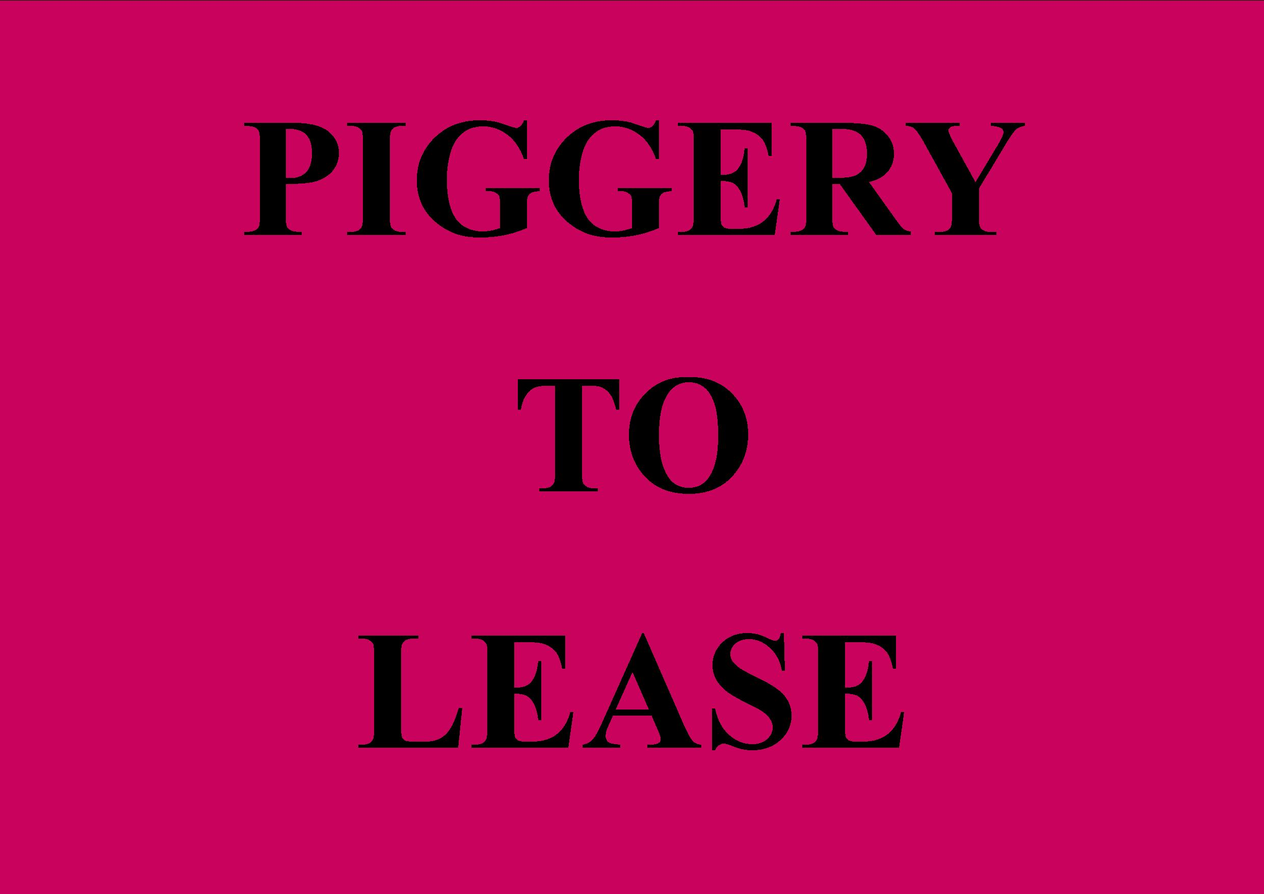 Leasehold Piggery Business for Sale Canterbury
