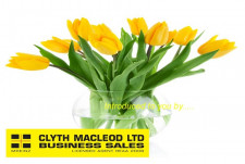 Funeral Services  Business  for Sale