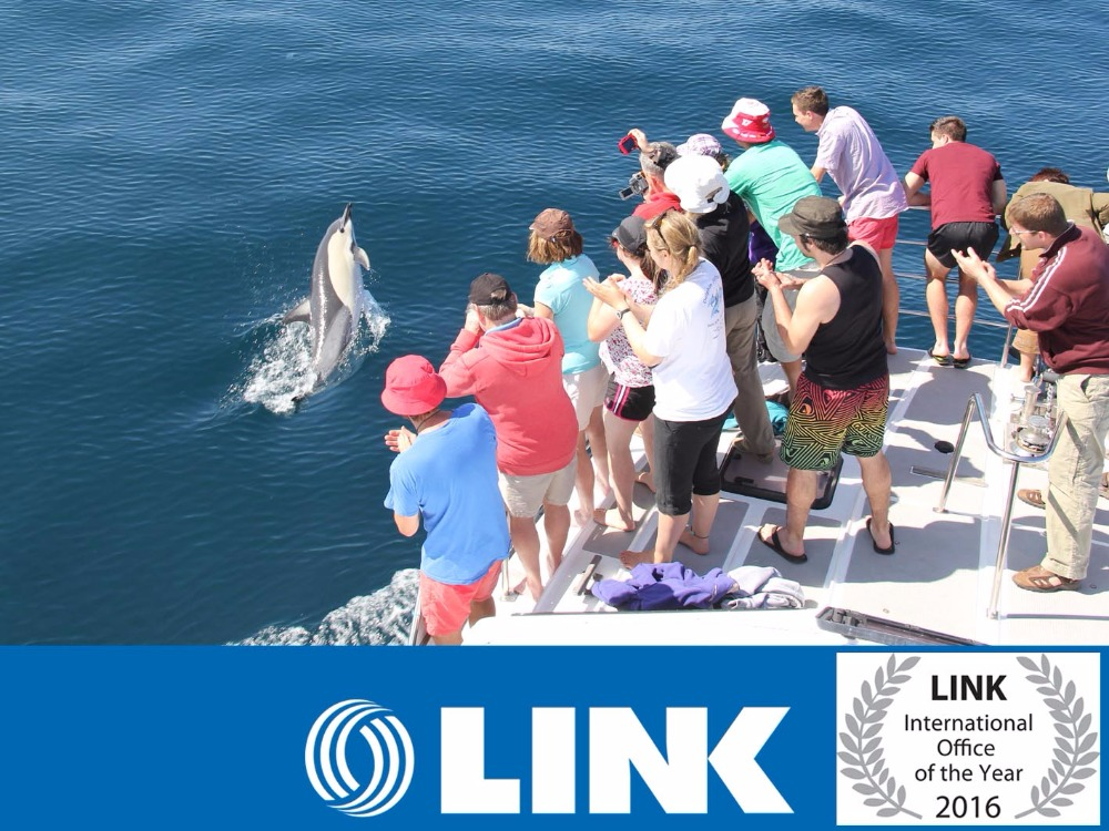Swimming with Dolphins Tourism Business for Sale Bay of Plenty