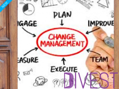 Change Management Consultancy  Business  for Sale
