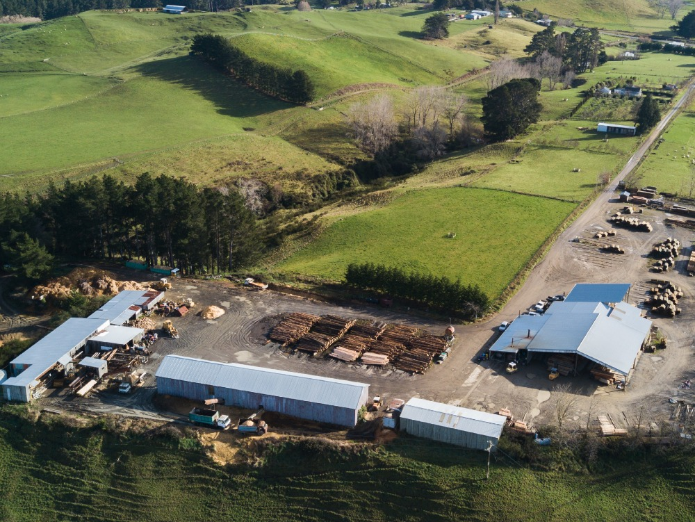 Ruahine Timber Business for Sale Hawke's Bay - Ormondville