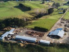 Ruahine Timber  Business  for Sale