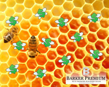 Honey Production  Business  for Sale