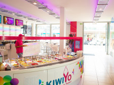 Frozen Yoghurt and Ice-cream Retail  Business  for Sale