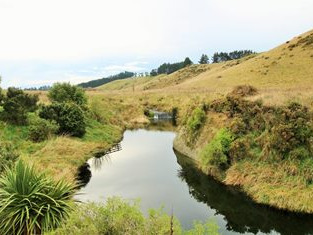 Beach-side Retreat and Lodge Business for Sale Otago