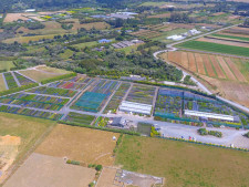 Horticultural Sector  Business  for Sale