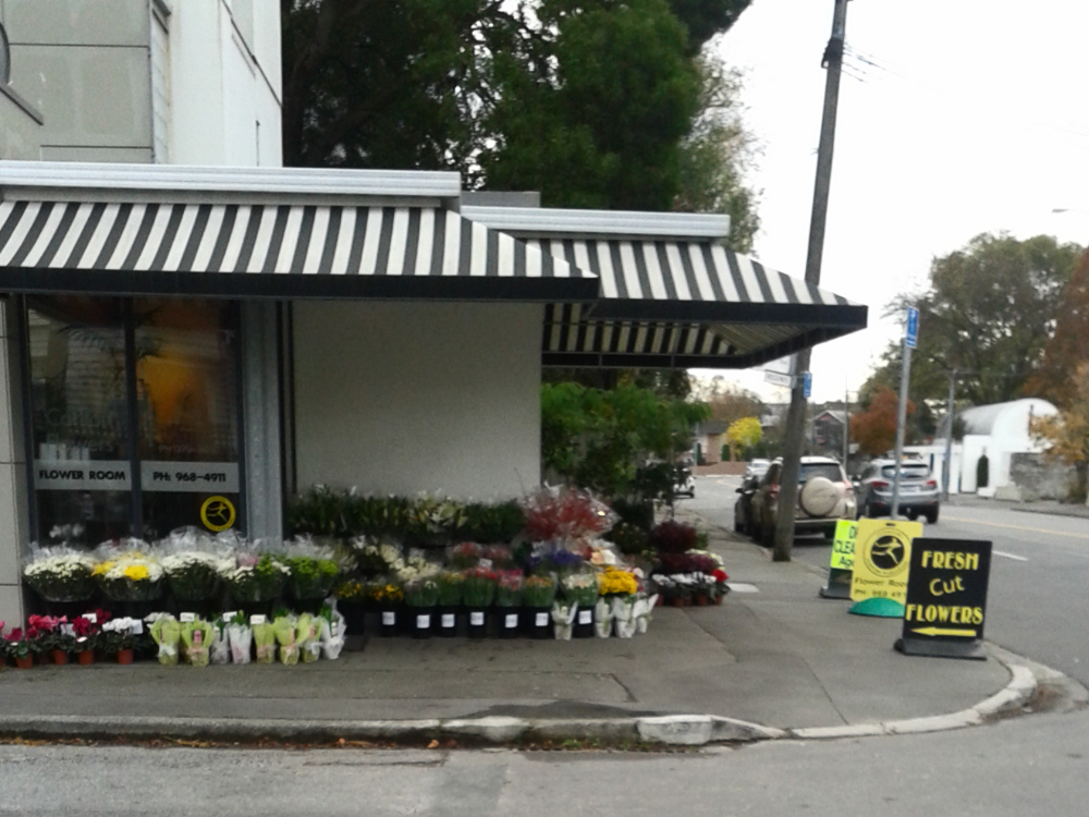 Flowers Florist Business for Sale Christchurch