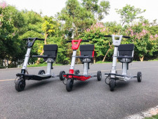 Mobility Scooters and Golf Cart  Business  for Sale