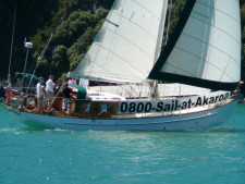 Sailing Cruises  Business  for Sale