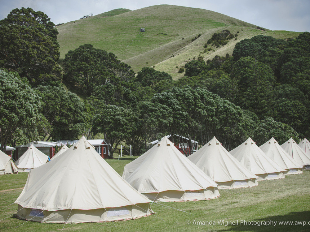 Luxury Tents Hire or Sale Business for Sale Herald Island Auckland