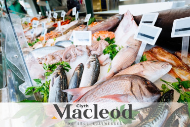 Fish Shop  Business  for Sale