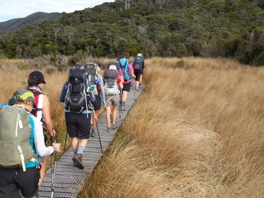 Eco Tourism Guided Walks Business for Sale Kahurangi National Park