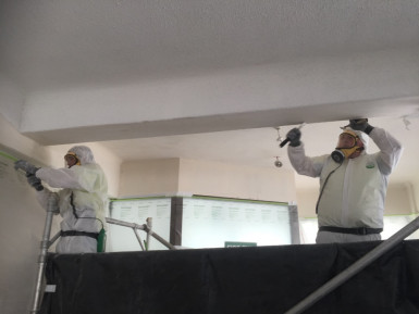 Asbestos Removal  Business  for Sale