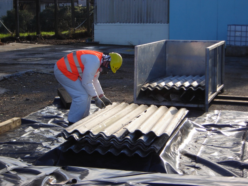 Asbestos Removal Business for Sale New Plymouth