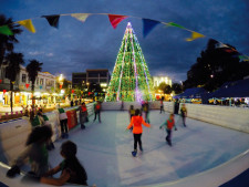 Ice Skate Tour  Business  for Sale