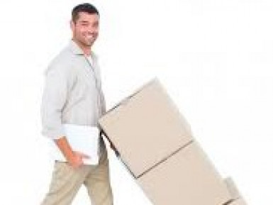 Transport Furniture Removal Business for Sale South Auckland