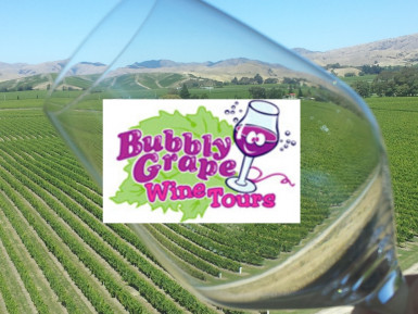 Wine Tour Company  Business  for Sale