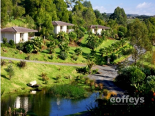 Boutique Resort Business for Sale Kerikeri Northland