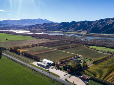 Vineyard Winery and Cellar Door Business for Sale Kurow Otago