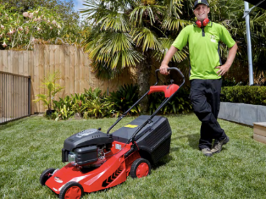Lawns and Garden  Franchise  for Sale