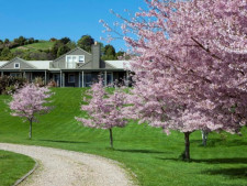 Boutique Bed and Breakfast Business for Sale Rotorua