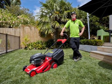 Lawn Mowing Franchise for Sale Palmerston North