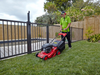 Lawns and Garden Franchise for Sale Auckland