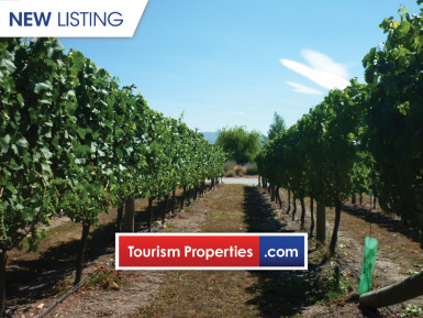 Award-Winning Vineyard and Winery Business for Sale Central Otago